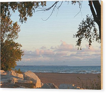 Autumn Lakeside Wood Print by Kay Novy