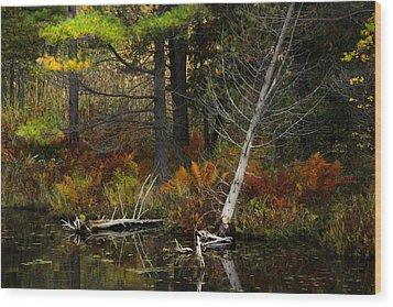 Autumn Landscape 1 Wood Print by Jim Vance
