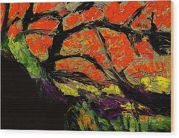 Autumn Landscape   Wood Print by Jim Vance