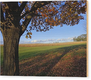 Autumn Landscape Wood Print by Joseph Skompski
