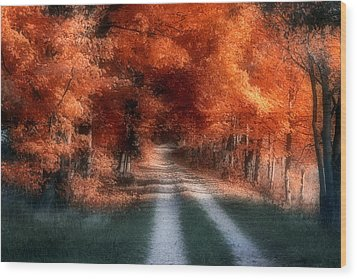 Autumn Lane Wood Print by Tom Mc Nemar