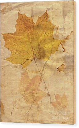Autumn Leaf In Grunge Style Wood Print