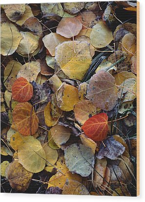 Autumn Leaf Puzzle Wood Print