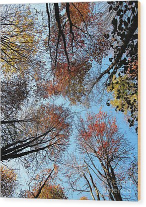 Autumn Leaves 2011 Season Wood Print by Tina M Wenger
