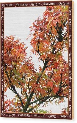 Autumn Leaves 3 Wood Print