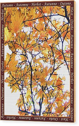 Autumn Leaves 4 Wood Print