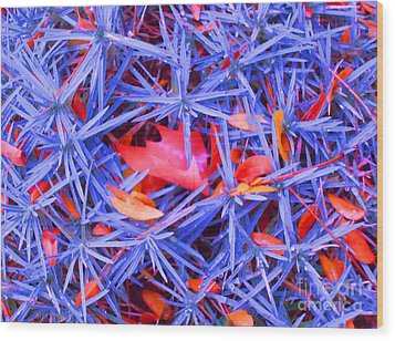 Autumn Leaves Among The Stars Wood Print