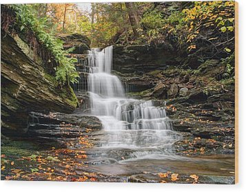 Autumn Leaves Below The Nameless Hidden Waterfall Wood Print by Gene Walls