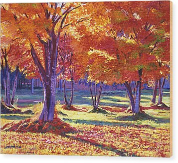 Autumn Leaves Wood Print by David Lloyd Glover
