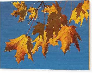 Autumn Leaves Wood Print by Dennis Bucklin