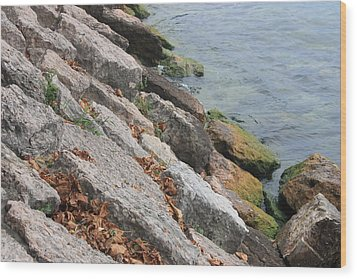 Wood Print featuring the photograph Autumn Leaves Lake Garda Italy by Jean Walker