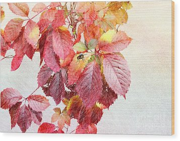 Autumn Leaves Wood Print by Liane Wright