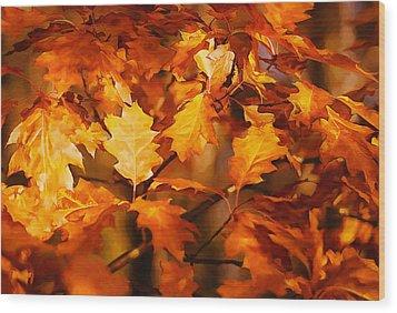 Autumn Leaves Oil Wood Print by Steve Harrington