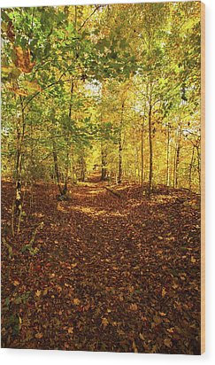 Autumn Leaves Pathway  Wood Print
