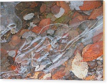 Autumn Leaves Under Ice Wood Print by Carolyn Reinhart