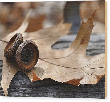 Autumn Leaves With Acorn Caps 001 Wood Print