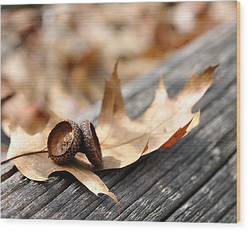 Autumn Leaves With Acorn Caps 002 Wood Print by Todd Soderstrom