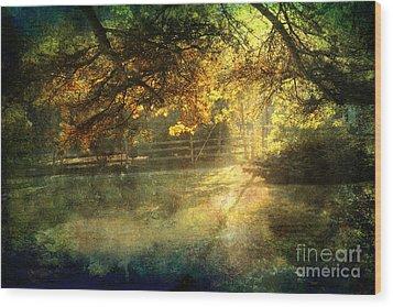 Autumn Light Wood Print by Ellen Cotton