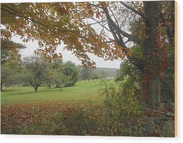 Autumn Meadow Wood Print by Jim Gillen