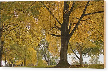 Autumn Memories Wood Print by Beverly Guilliams