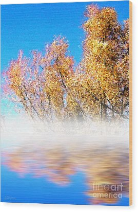 Wood Print featuring the photograph Autumn Mist by Cristophers Dream Artistry