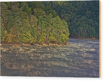 Autumn Mist Wood Print by Tom Culver