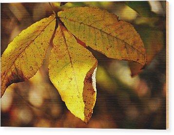 Autumn Moon Wood Print by JAMART Photography
