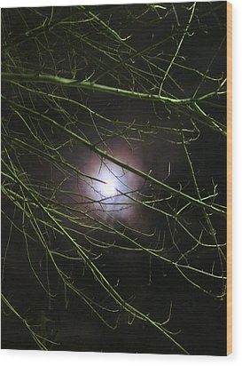 Autumn Moon Peeks Through The Branches Wood Print by Guy Ricketts