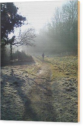 Autumn Morning  Wood Print by David Stribbling
