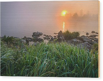 Autumn Morning II Wood Print by Davorin Mance