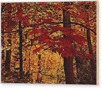 Autumn Mosiac  Wood Print by Dianne  Lacourciere