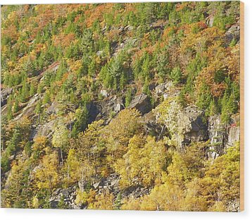Wood Print featuring the photograph Autumn Mountain Side by Gene Cyr