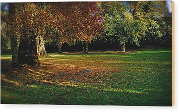 Autumn Wood Print by Nina Ficur Feenan