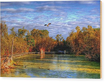 Autumn On The Boardwalk Wood Print by Larry Trupp