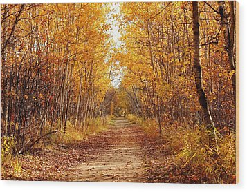 Autumn On The Harte Trail Wood Print by Larry Trupp