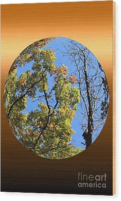 Autumn Opens Up Wood Print by Rick Rauzi