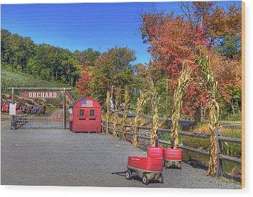 Autumn Orchard Wood Print by Joann Vitali
