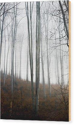 Autumn Pastel Wood Print by Ioana Todor