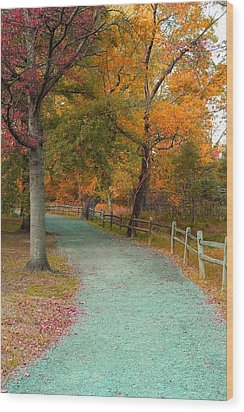Autumn Path Wood Print