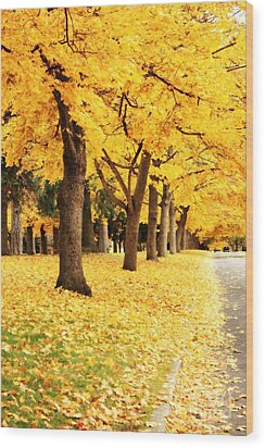 Autumn Perspective Wood Print by Carol Groenen