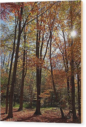 Autumn Picnic Wood Print by Debbie Oppermann