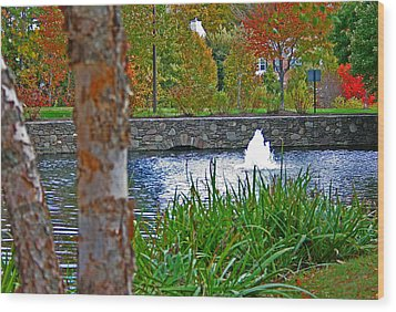 Wood Print featuring the photograph Autumn Pond Another View by Andy Lawless