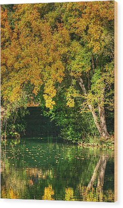 Autumn Pond Wood Print by Ester  Rogers