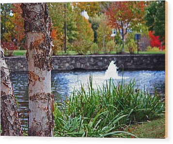 Wood Print featuring the photograph Autumn Pond by Andy Lawless