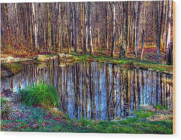 Autumn Pond Reflections Wood Print