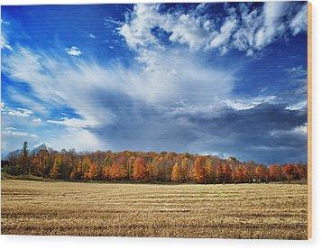 Wood Print featuring the photograph Autumn Rain Over Door County by Mark David Zahn Photography