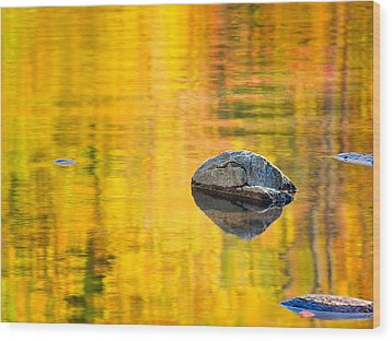 Autumn Reflected Wood Print by Joan Herwig