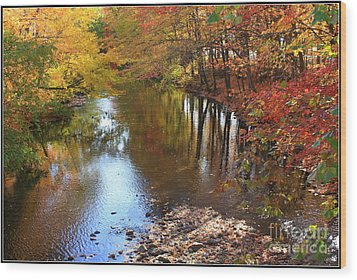 Autumn Reflection Wood Print by Dora Sofia Caputo Photographic Art and Design
