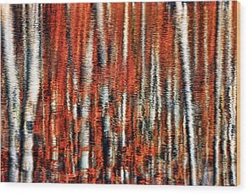 Autumn Reflection Wood Print by Marcia Colelli
