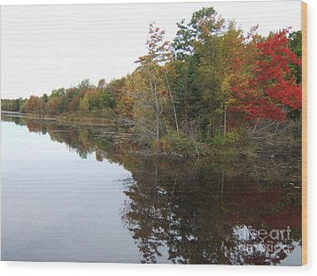 Autumn Reflection Wood Print by Margaret McDermott